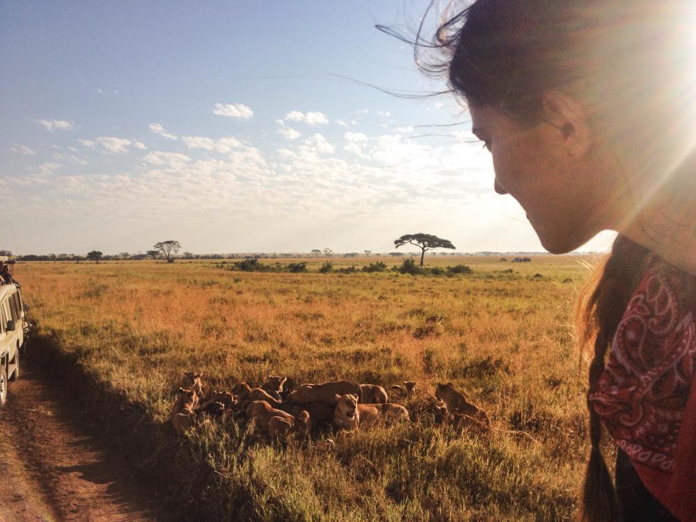 kasia kowalczyk lions twins on tour safari