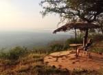 safari morning twins on tour kasia kowalczyk