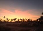 sunset twis on tour zanzibar palmas