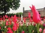 tulips sculpture park oslo notway twins on tour